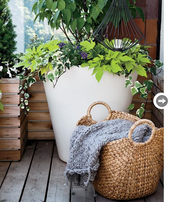 modern-backyard-throw-basket.jpg