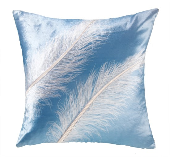 feathers-pillow.jpg