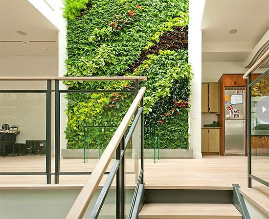 garden-trend-livingwall.jpg