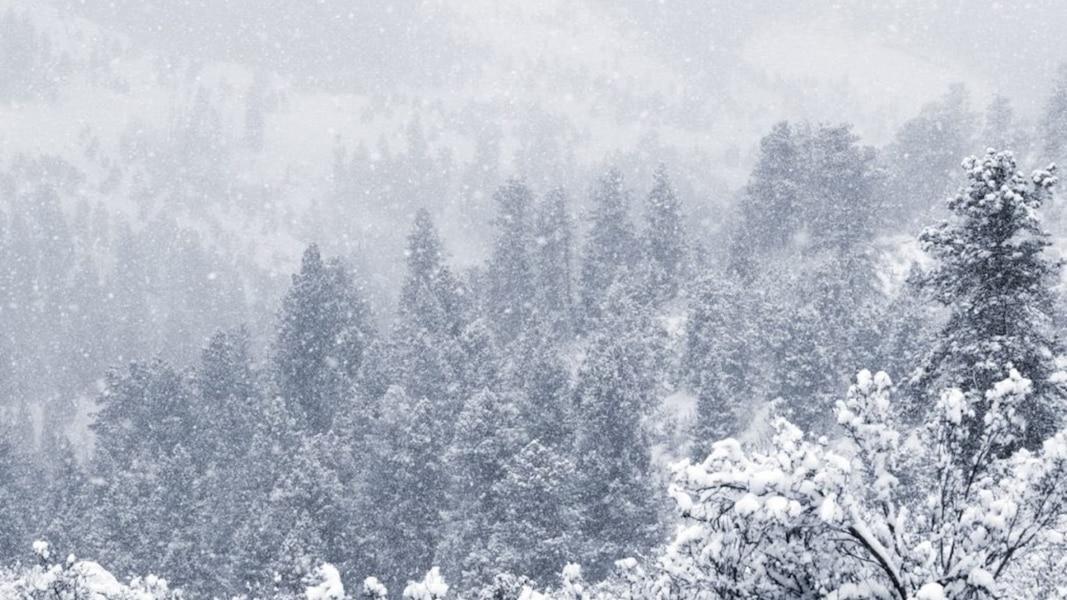 Un Premier Jour D 233 T 233 Hivernal Dans Le Colorado Tva