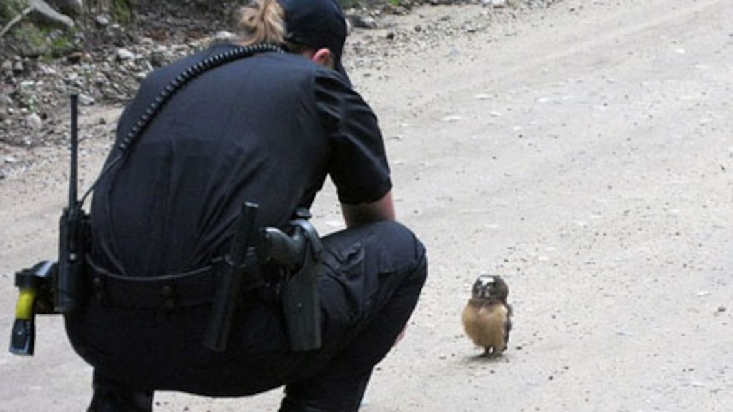 Rencontre avec policier