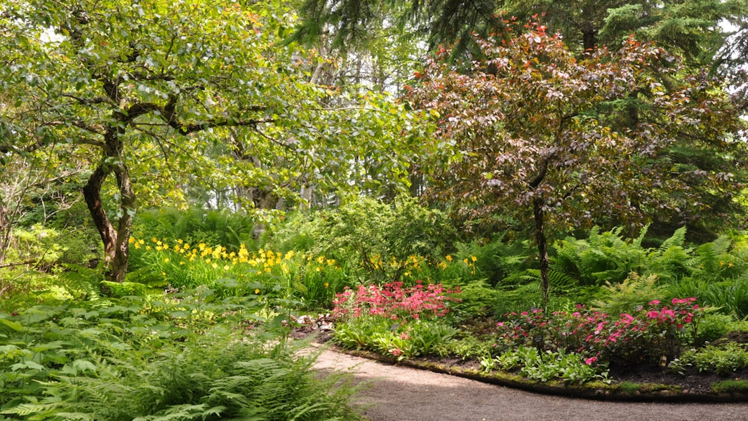 Aide financi re pour les jardins de m tis tva nouvelles for Jardin de metis 2016