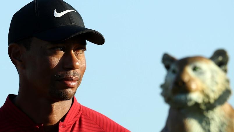 Tiger Woods bientôt de retour sur les verts