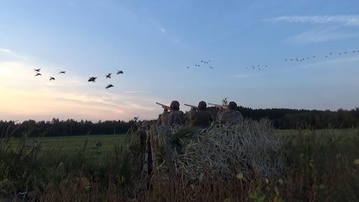 C'est le temps de la chasse de la Bernache du Canada