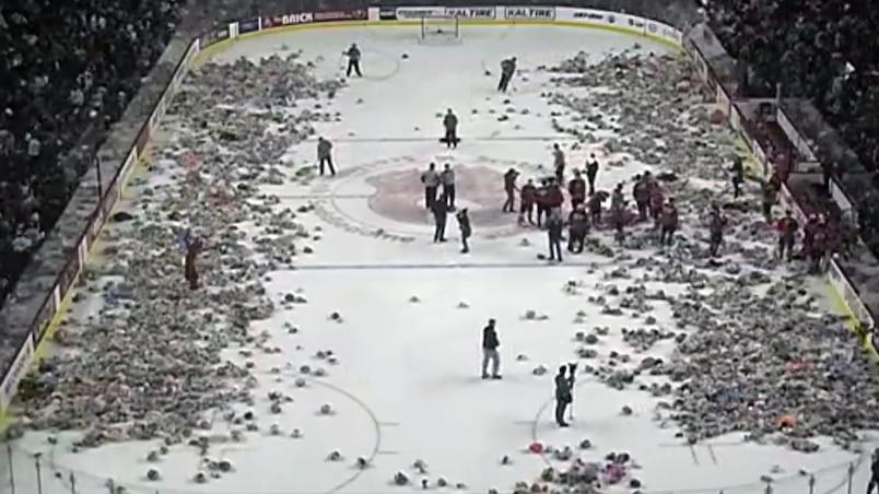Pluie de toutous à Calgary!