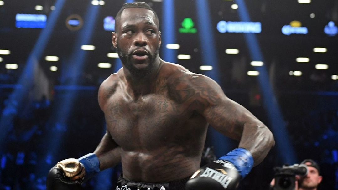 FILES-BOX-HEAVY-WBC-WILDER