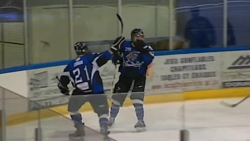 Coup d'oeil sur le hockey senior québécois