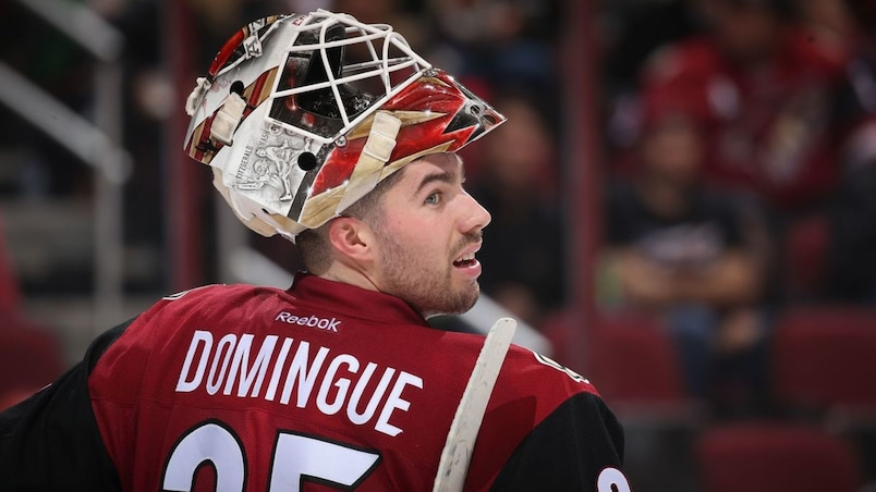 Louis Domingue ne trouve pas preneur