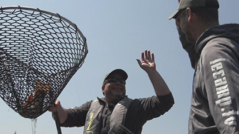 Québec à vol d'oiseau : pêche à la truite mouchetée