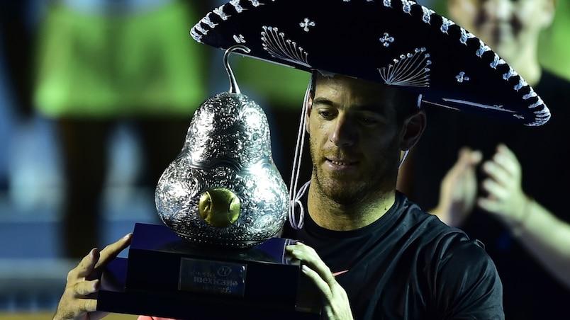 Juan Martin Del Potro s'impose en finale face à Kevin Anderson à Acapulco