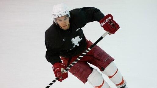 Pratique hockey joueurs LNH