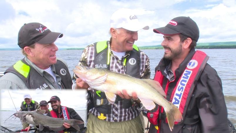 Une grande variété de poissons au Lac Deux-Montagnes