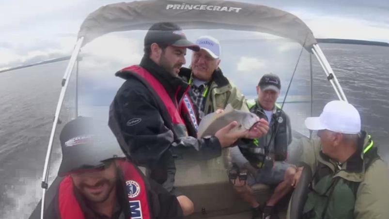 Pêche multi-espèces au Lac des Deux-Montagnes